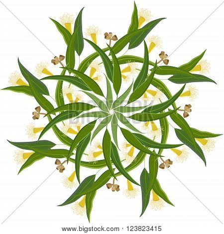 Abstract round ornament mandala with eucalyptus leaves and flowers. Colorful circular floral motif pattern isolated on white background