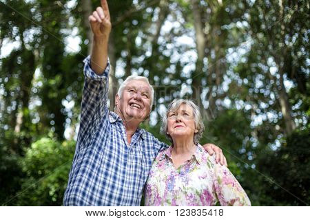Senior man pointing while standing by wife against trees in back yard