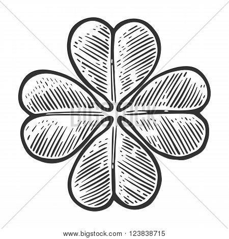 Good luck four leaf clover. Vintage vector engraving illustration for info graphic poster web. Black on white background.
