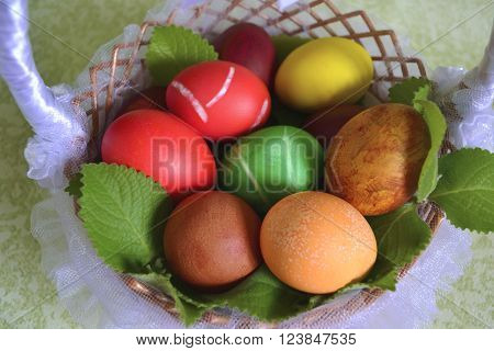basket tulle with coated painted eggs for Easter flowers and mint