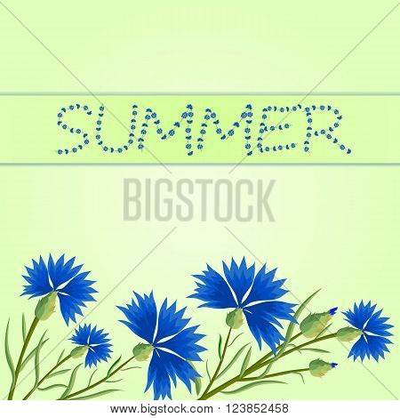 Summer. Vector illustration with blue cornflowers and the inscription of cornflowers. Greeting card bannerinvitation.