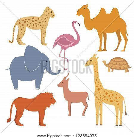 Vector animals set including giraffe turtle elephant lion leopard flamingo gazelle camel. Flat disigne