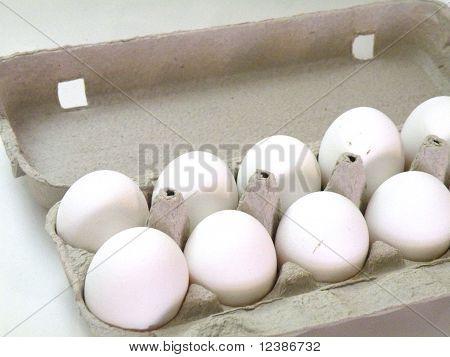 Chicken Egg Whites