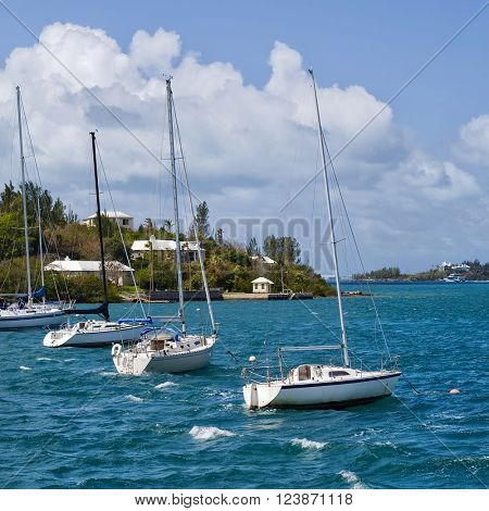 Sailboats moored in Hamilton Harbour, Bermuda.