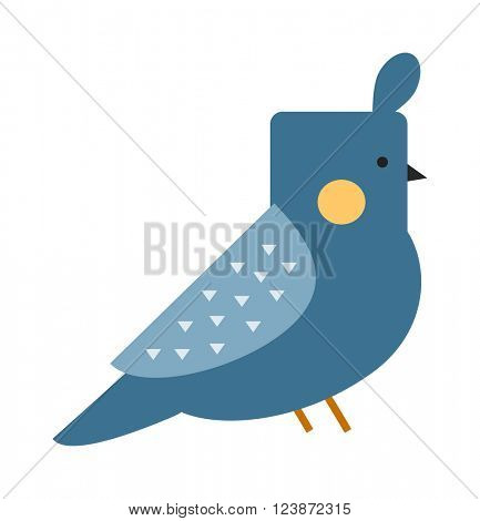 Cute canary bird and canary finch animal. Ornithology aves color sweet wilderness canary bird tuft hair head. Blue funny canary serinus canaria cute domestic finch nature and wildlife bird flat vector
