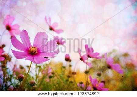 Beautiful background with grunge flowers. Flowers vintage background
