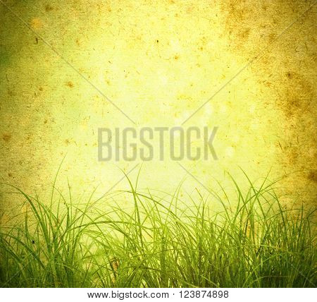 Old background  and green grass