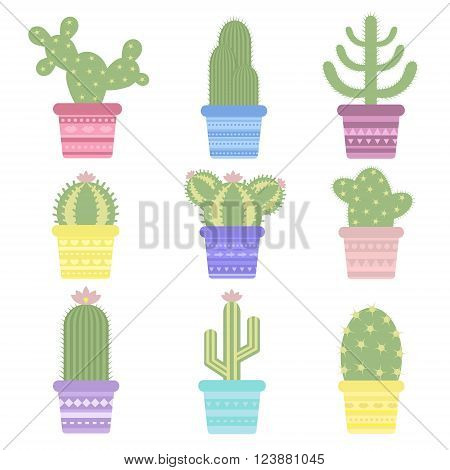 Isolated cactus in a pot. Icon of cactus flower. Desert plant. Vector illustration of a colored cartoon cactus.