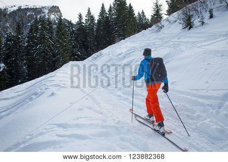 Randonnee Ski Trails Near The Forest