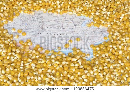 Geographical map of United States of America covered by a background of corn seeds. This nation is the one of the five main producers and exporters of maize. Horizontal image.