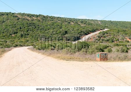 ADDO ELEPHANT NATIONAL PARK SOUTH AFRICA - FEBRUARY 23 2016: A typical landscape in the Addo Elephant National Park