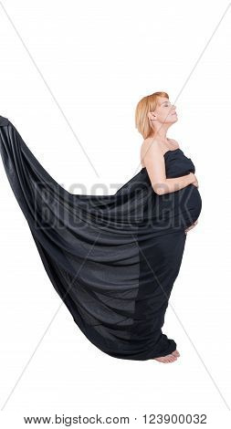 Graceful Concept With Pregnant Woman