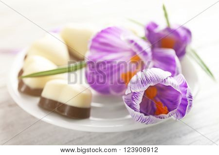 Beautiful crocus flowers on saucer with candies closeup
