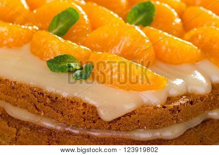 Citrus pie homemade cakes with mandarin and lemon cream decorated with mint close-up