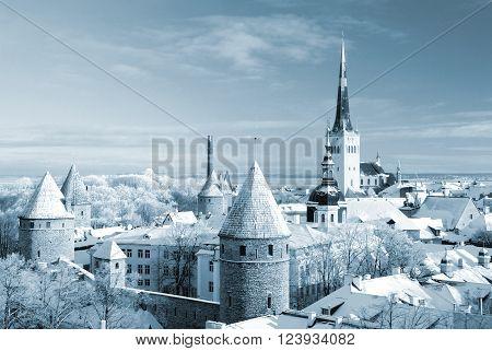 Tallinn city. Estonia. Snow on trees in winter panorama view. Blue tinted image.