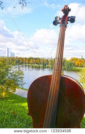 A view of Cello in the park