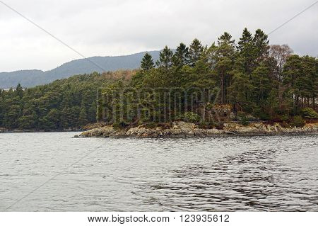 Norwegian fjords and mountains. Rocky shore, waves and trees. Bergen