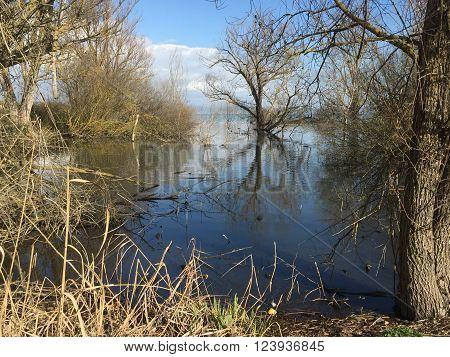 Lago trasimeno nell italia centrale in periodo di acqua alta