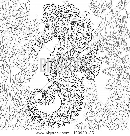 Zentangle stylized cartoon seahorse and tropical fish among seaweed. Hand drawn sketch for adult antistress coloring page T-shirt emblem logo or tattoo with doodle zentangle floral design elements.