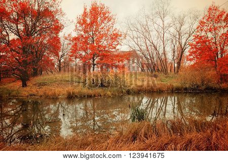 Autumn cloudy landscape in pictorial tones - abandoned house at the bank of the river in the autumn grove. Soft filter and creative tones processing