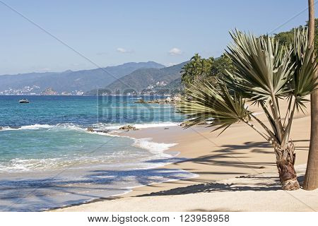 Remote beach south of Puerto Vallarta Mexico