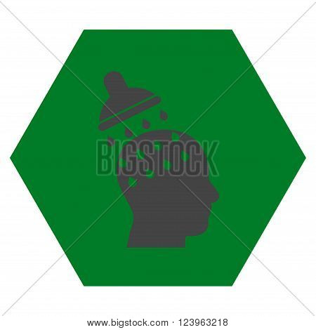 Brain Washing vector icon. Image style is bicolor flat brain washing pictogram symbol drawn on a hexagon with green and gray colors.