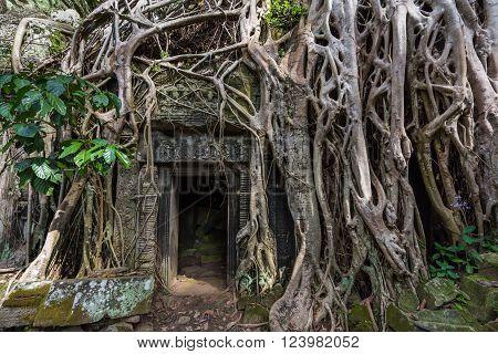 Ancient Stone Doorway
