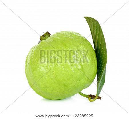 Guava Fruit Isolated On The White Background