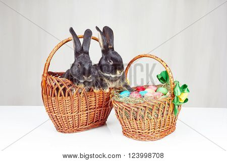 Two black rabbits sitting in a basket next to Easter basket