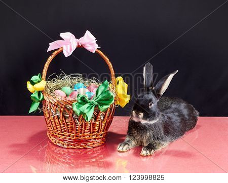 Easter basket with eggs and little rabbit