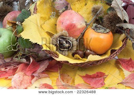 Autumnal Fruit Composition In A Basket