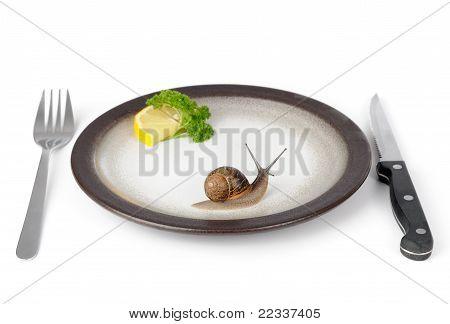 Cena de primera clase