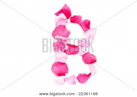 Pink Petal Letter - Capital B
