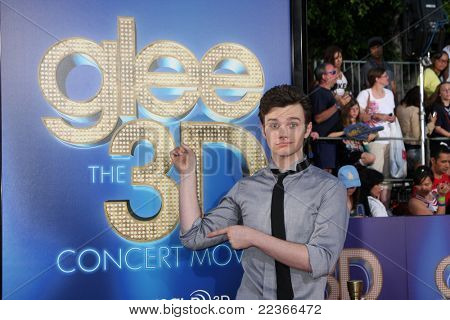 LOS ANGELES - AUG 6:  Chris Colfer arrives at the