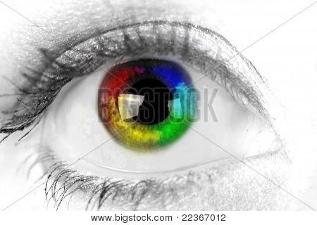 Woman eye. Closeup.