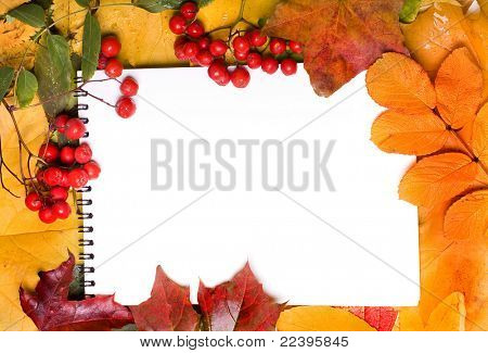 notepad with frame of autumn leaves
