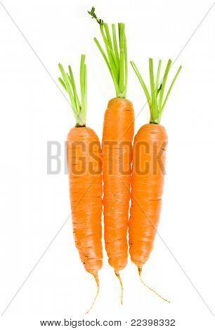 Carrots  fresh vegetable group on white background