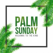 Palm Sunday Holiday Card, Poster With Palm Leaves Border, Frame. Vector Background poster