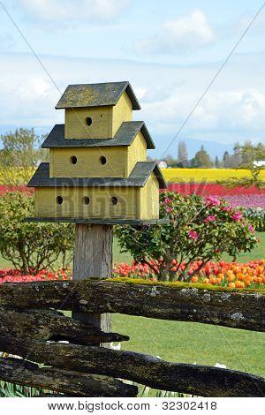 Yellow Birdhouse In Garden
