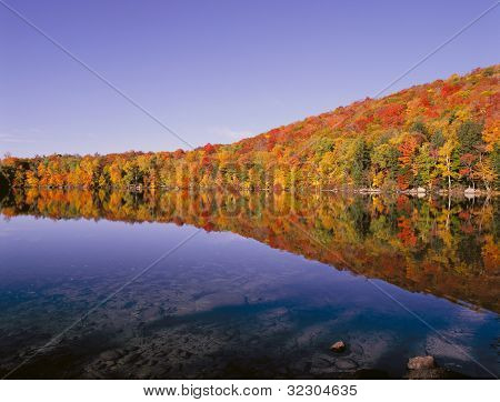 Grant Pond Sunrise
