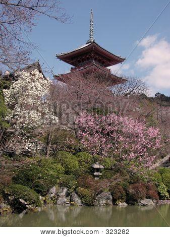 Kyomizudera-early Spring
