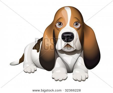 Basset Hound puppy lying on floor