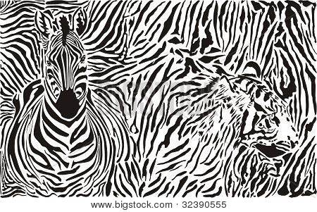 Zebra and tiger and pattern background