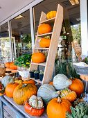 Autumn Decoration With Thanksgiving Orange Pumpkins And Flowers In Flower Shop. poster