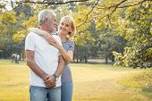 Happy Smiling Of Senior Couple In A Park On A Holiday. poster