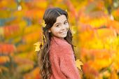 Cozy Autumn Day. Play With Leaves. Happy Childhood. Fall Festival. Simple Happiness. Kid Enjoy Autum poster
