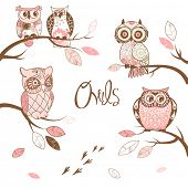 stock photo of owls  - Owls - JPG