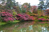 Hirosaki Castle Park Autumn Foliage Scenery View. Beautiful Landscapes Of Multicolor Reflecting On S poster