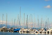 Sailboats In The Harbor Of Ouchy On A Sunny Summer Day In July. Ouchy Is The Harbor In Lausanne, Swi poster