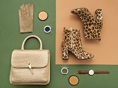 Top View On A Pair Of Trendy Leopard Print Boots, Crocodile Crossbody Bag, Leather Gloves, Eyeshadow poster